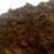 Syntetyczny obornik i wartość produkcyjna gnoju