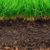 Gleba a urodzajność